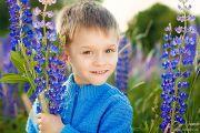 Детская фотосессия в поле люпинов
